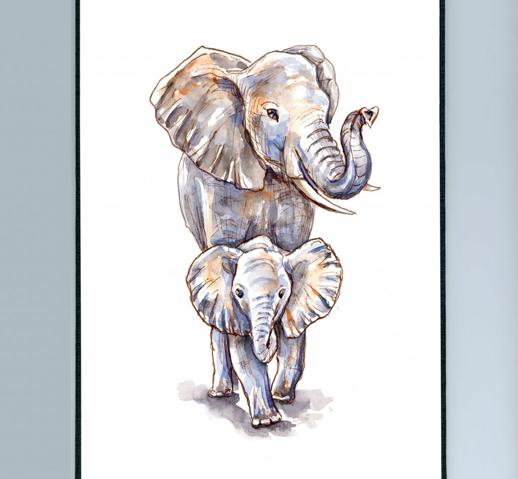 Baby Elephant And Mother Watercolor Illustration Sketchbook Detail