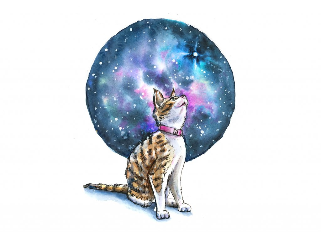 Cat Looking Up Stars Galaxy Watercolor Painting