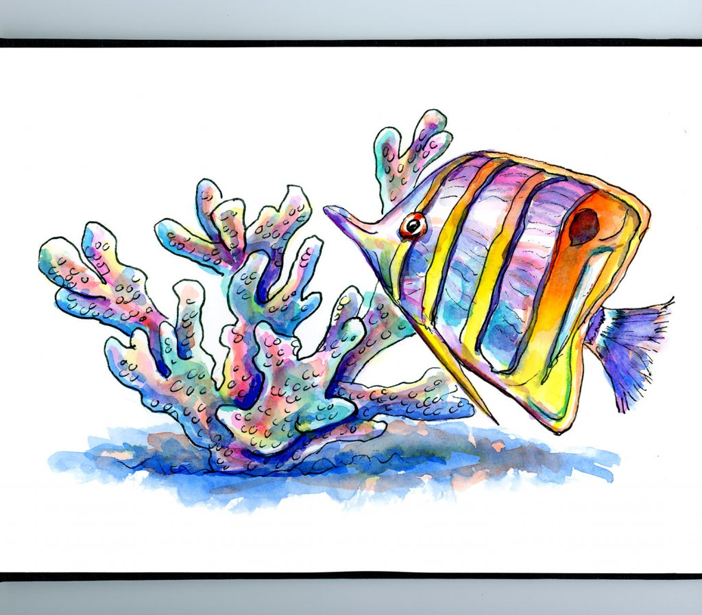 Butterfly Fish And Coral Watercolor Painting Sketchbook Detail
