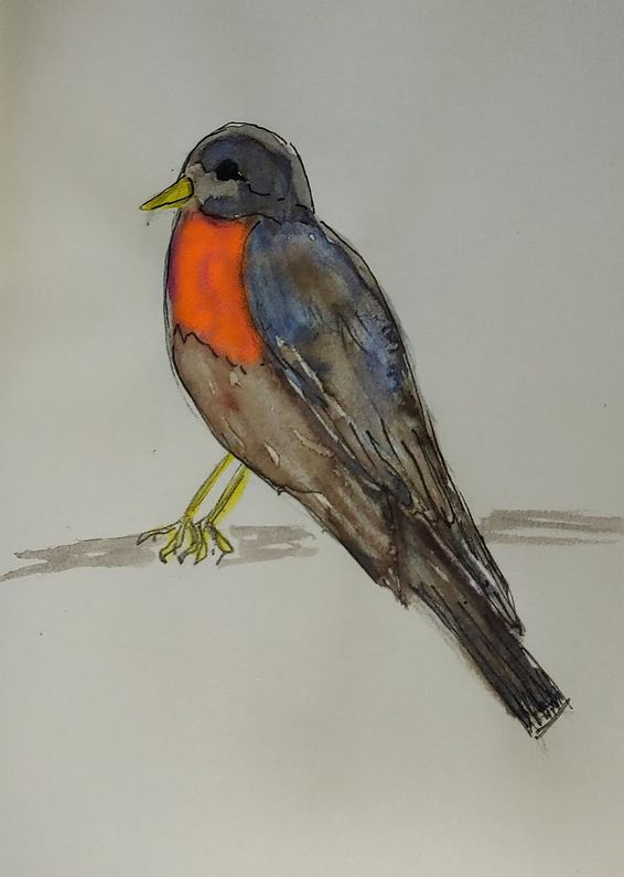 I tried to paint this robin for a challenge on our online-artclub. Not really nature like but certai