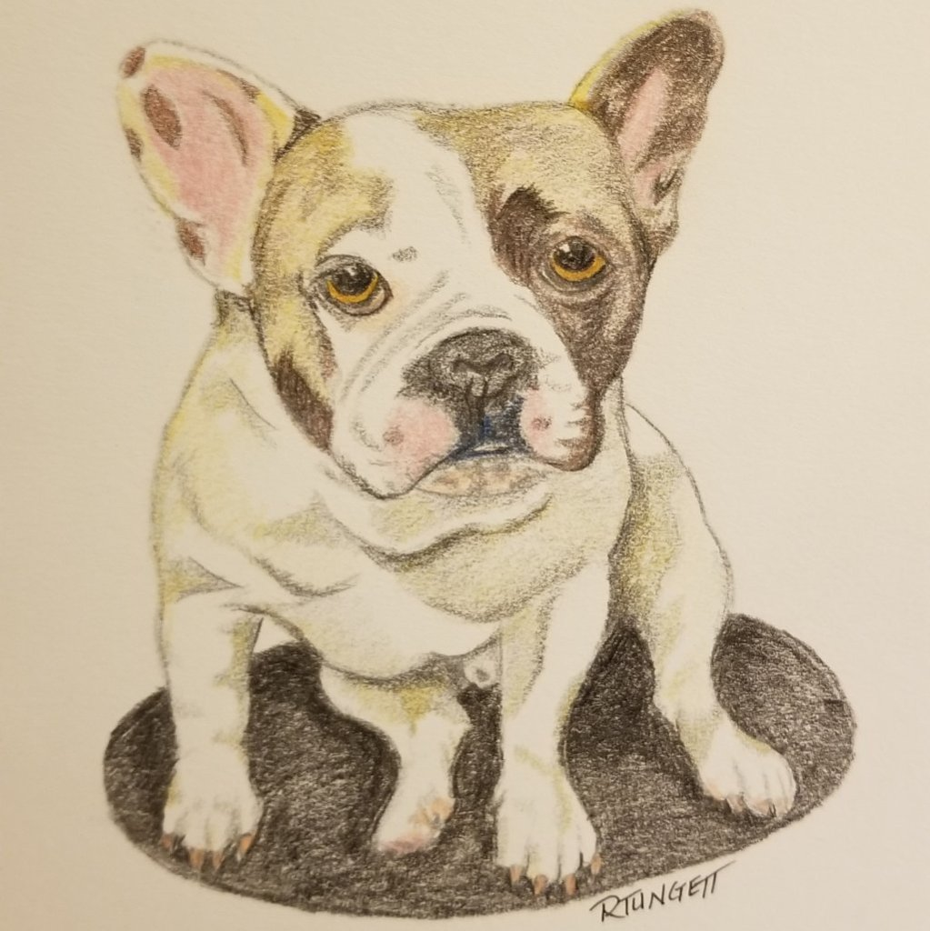 Trying to learn colored pencil drawing. Definitely different than just graphite. 20200504_041817