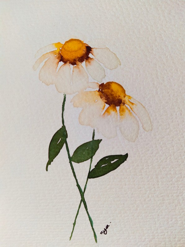 Daises Watercolor Painting Gnadia Art