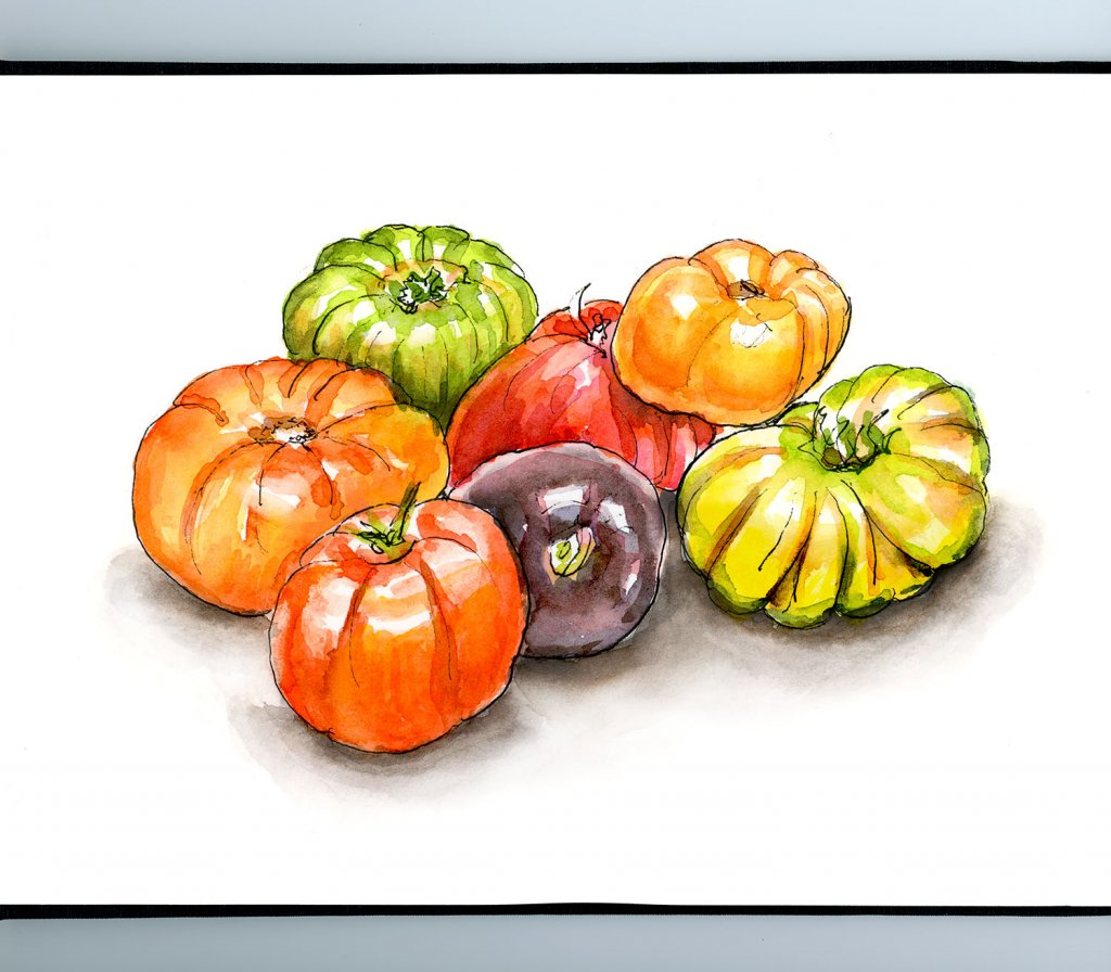 Heirloom Tomatoes Watercolor Painting Sketchbook Detail
