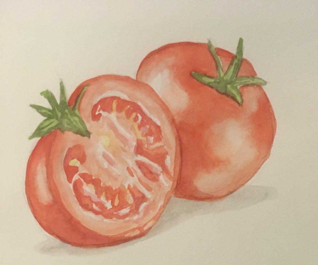 Day 9 tomatoes EC93B82D-8257-4BF6-B7F3-8B17507EE978