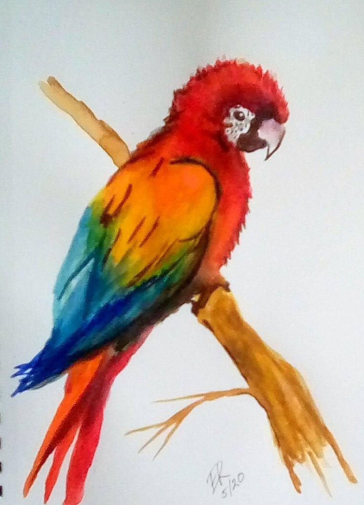 Watercolor challenge IMG_20200509_152903_kindlephoto-385606112