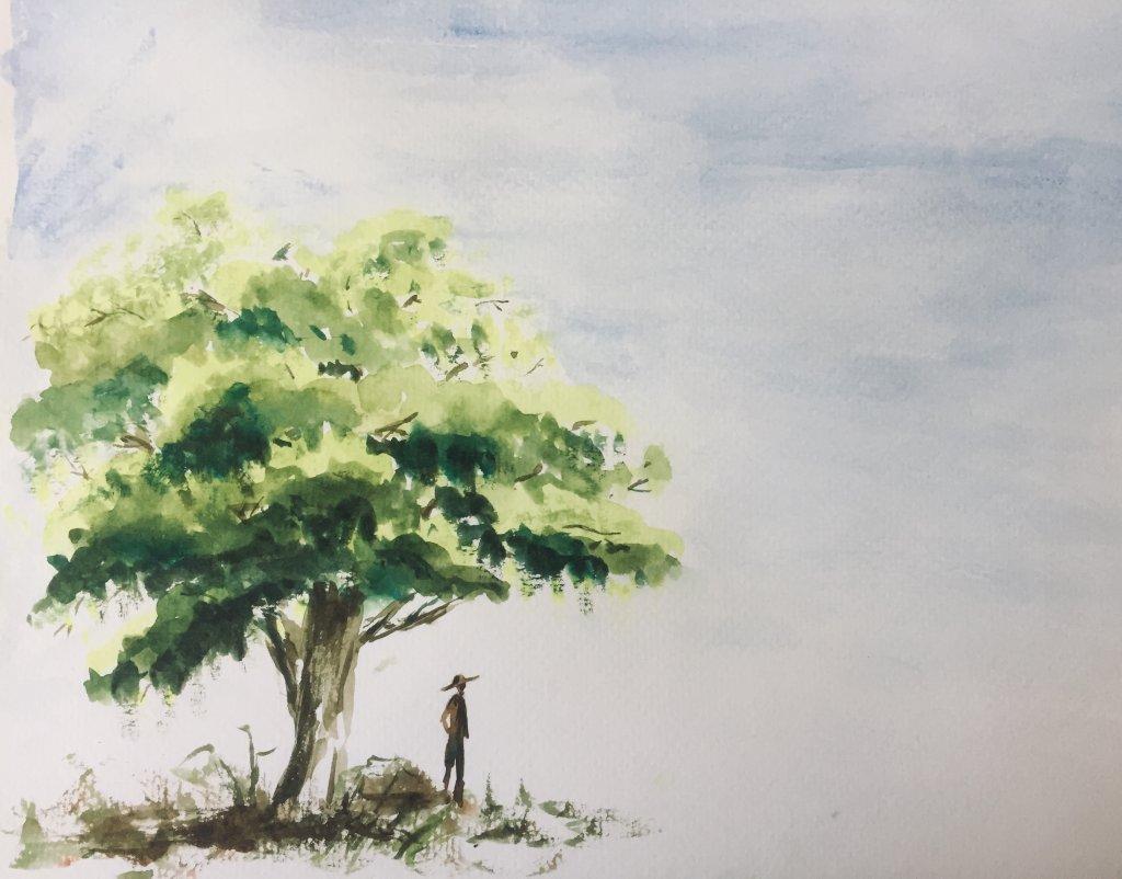 5-Minute Tree fullsizeoutput_612