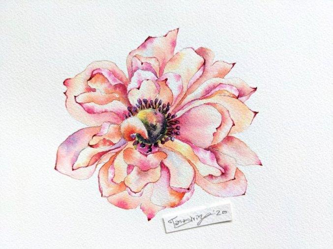 Peach Watercolor Flower