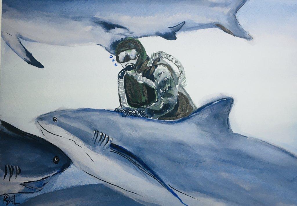 A shark whisperer 1E823A19-5203-41C2-81BE-059747CE4991