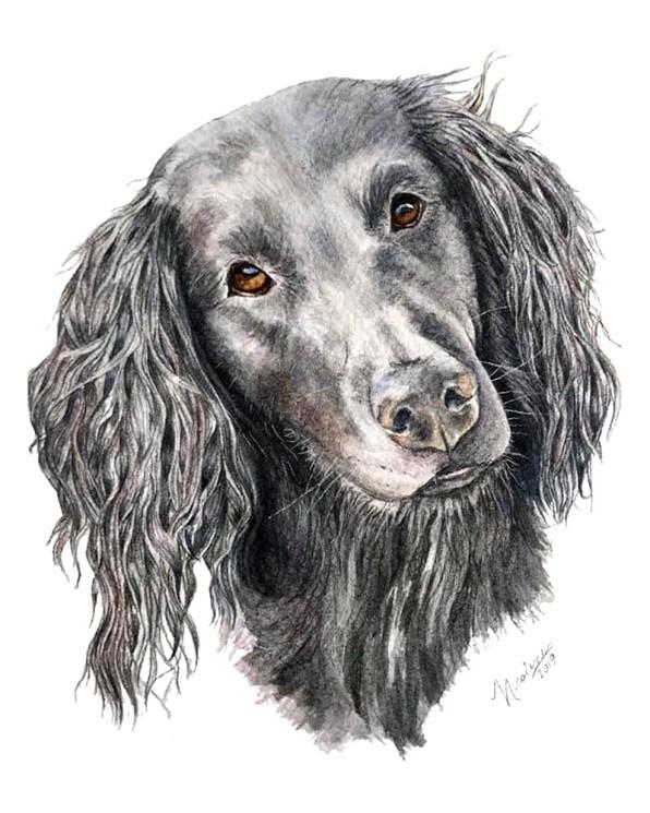 Dog Pet Potrait Pebbles_8x10 Watercolor Painting