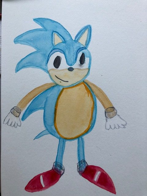 Hedgehog…of course Sonic..my video game buddy 🙂 IMG_5071