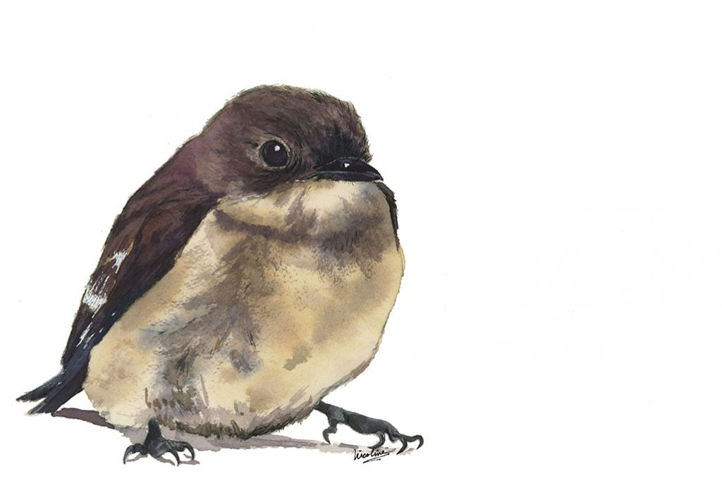Little Bird Watercolor Painting