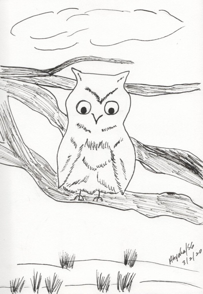 I actually sketched this little owl before I knew about the doodlewash challenge, but since it was j