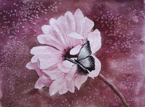 Pink Flower And Butterfly Watercolor Painting by Dagmar Olschewski