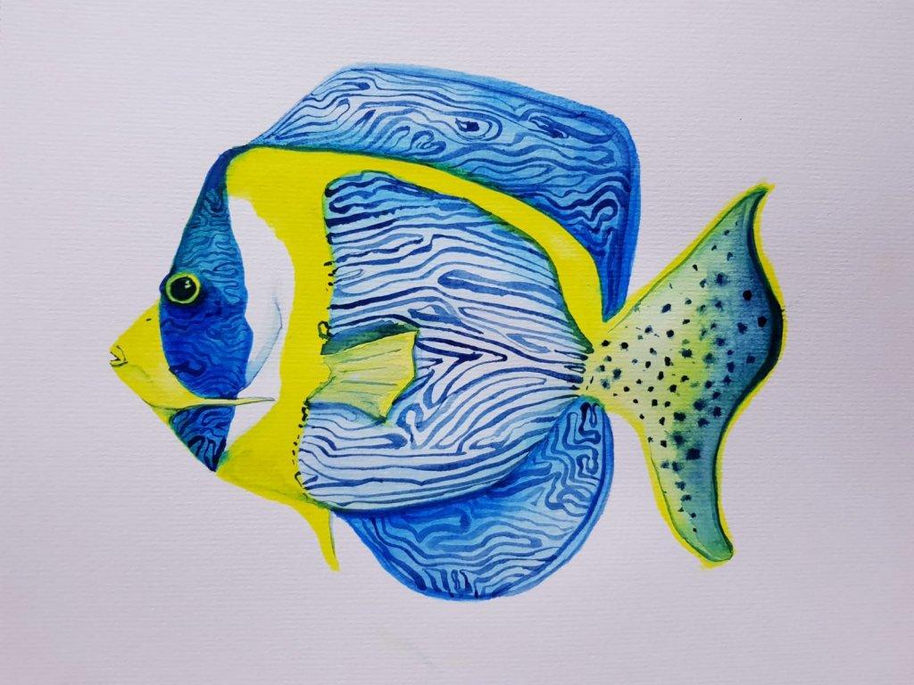 Doodlewash #14: Angelfish WhatsApp Image 2020-06-29 at 20.01.54