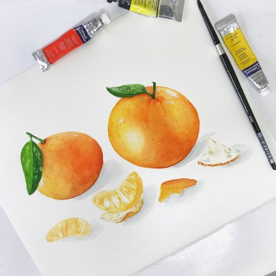 oranges watercolor painting by Disha Sharma