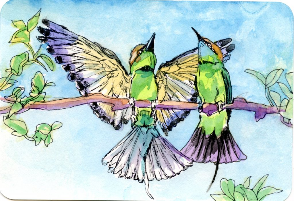 These bee-eaters seemed to be rejoicing to me. Did you know that these birds will only eat insects t
