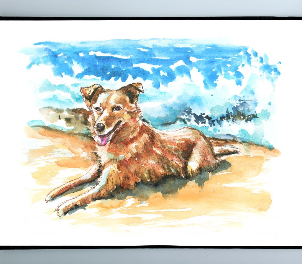 Dog On The Beach Watercolor Palette Illustration Sketchbook Detail