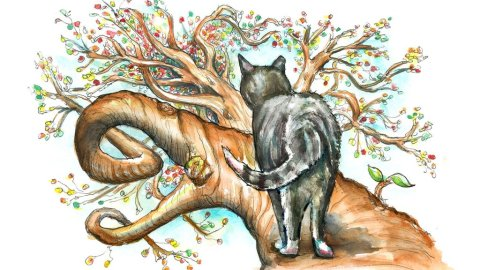Cat In Tree Twisted Branches Perspective Watercolor Palette Illustration
