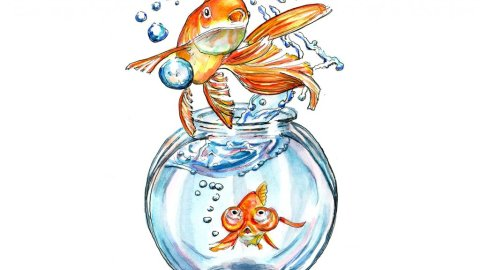 Goldfish Jumping Out Of Bowl Watercolor Painting Illustration
