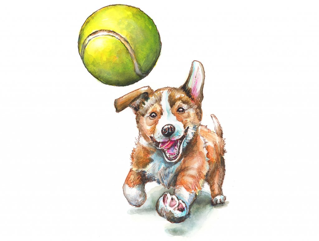 Puppy Chasing Tennis Ball Watercolor Painting Illustration