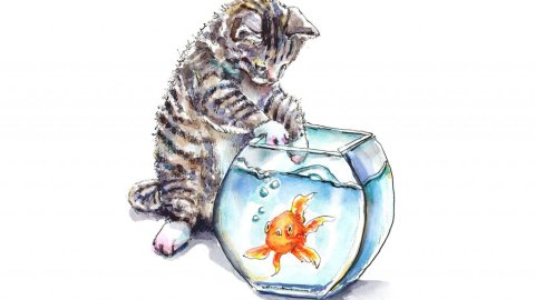 Kitten Cat Reaching Into Goldfish Bowl Watercolor Illustration Painting