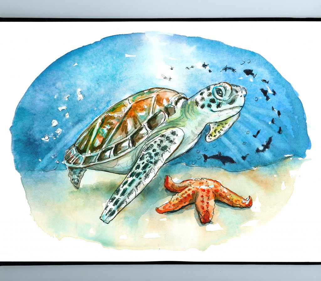 Sea Turtle Underwater Starfish Fish Watercolor Illustration Painting Sketchbook Detail