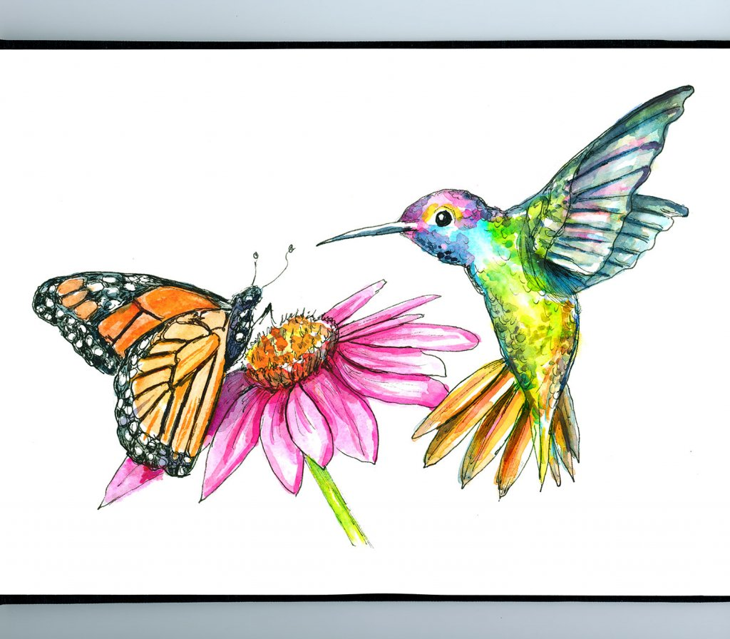 Hummingbird And Butterfly Flower Watercolor Illustration Painting Sketchbook Detail