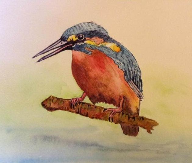 Kingfisher Kingfisher