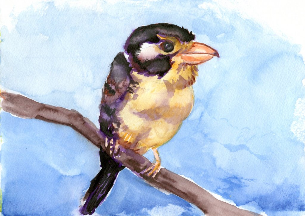 Watercolour Marker Painting Example Bird And Sky