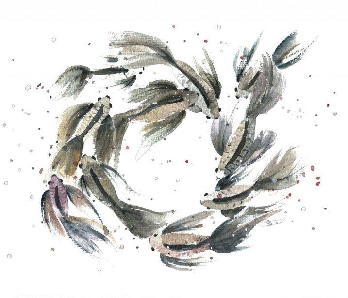 Koi fish watercolor painting by Jitka Zajíčková