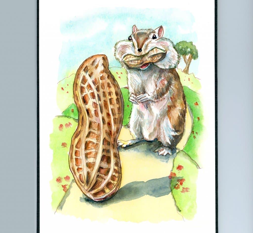 Chipmunk Eating Peanuts Cheeks Watercolor Painting Illustration Sketchbook Detail