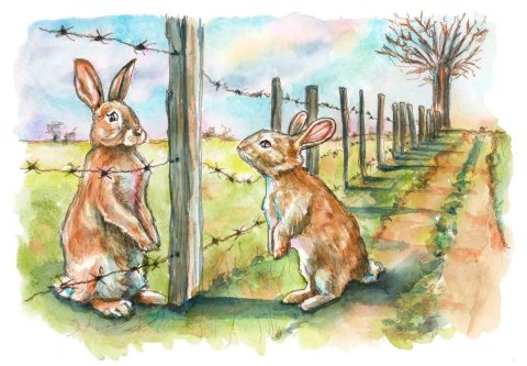 Rabbits Social Distancing Barbed Wire Farm Fence Watercolor Painting Illustration