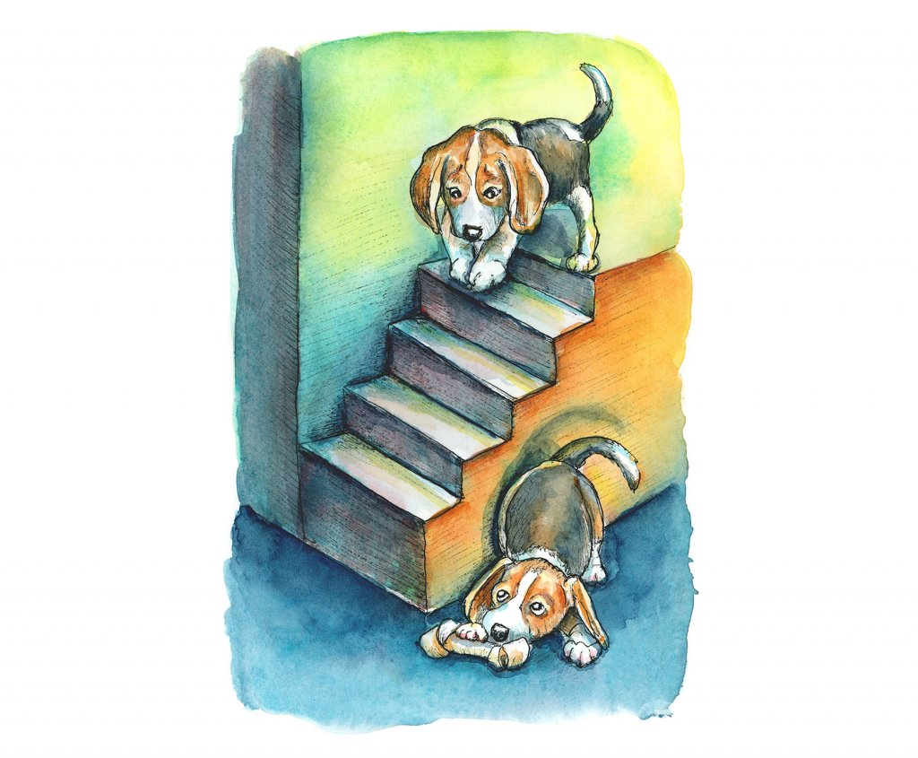 Dogs Beagle Puppies Playing Hide And Seek Watercolor Painting Illustration