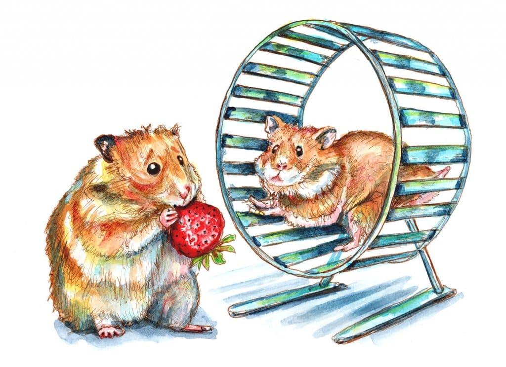 Hamster Wheel Fat Hamster Eating Skinny Hamster Running Watercolor Painting Illustration
