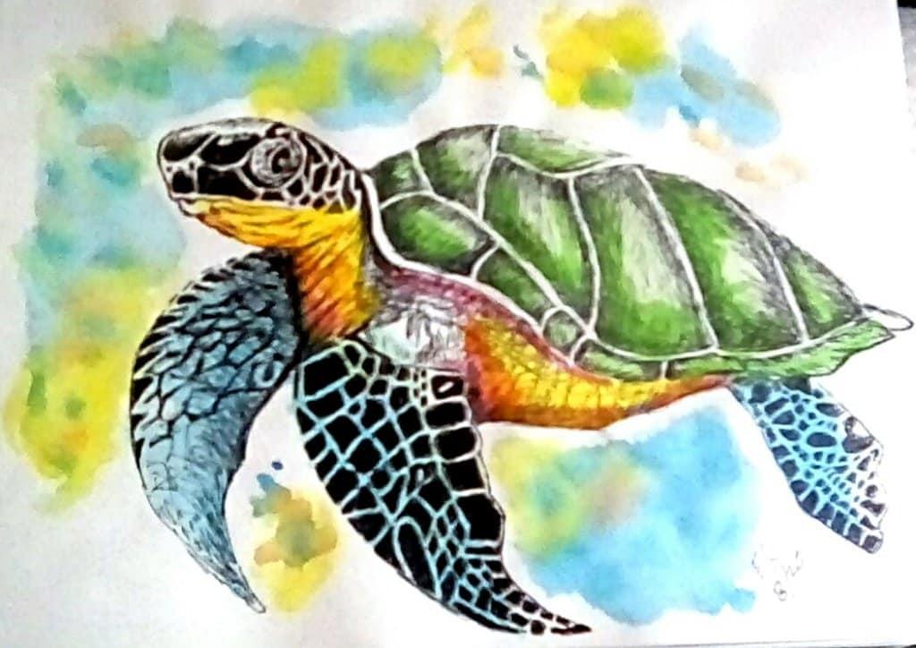 """Today's watercolor challenge """"Turtle 🐢"""" IMG_20200805_224223_hdr_kindlephot"""