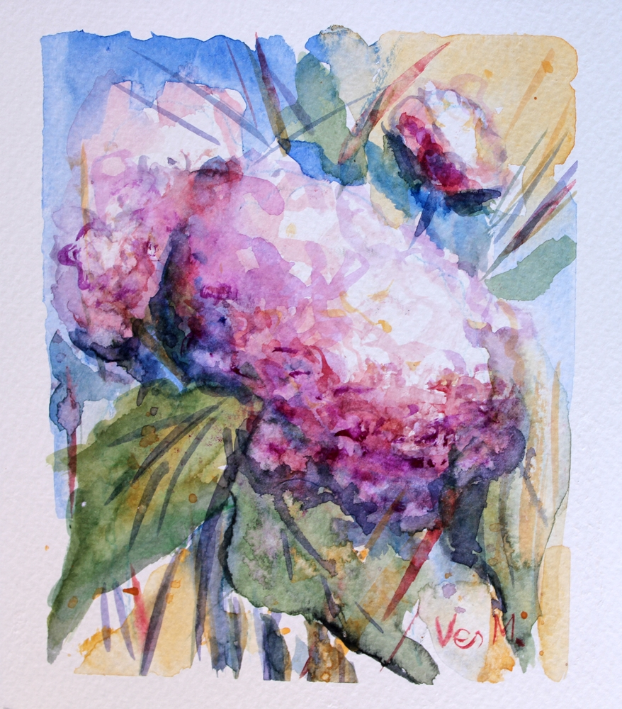 Watercolor Hydrangeas IMG_3006