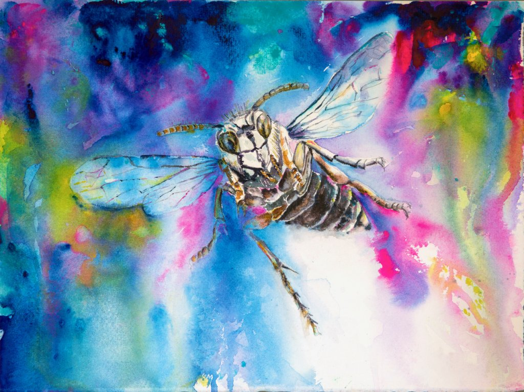 Pink Poison Insect Watercolor