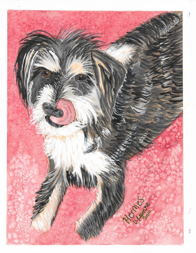Watercolor pet portrait on hahnemuel harmony hot press paper using mostly davinci colors. 🙂 2020-