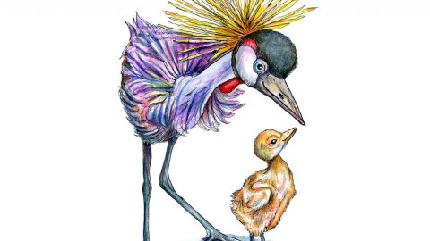 Grey Crowned Crane With Baby Chick Watercolor Painting Illustration