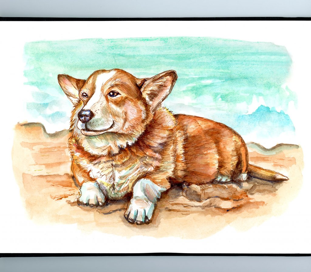 Happy Corgi Dog On Beach Watercolor Painting Illustration Sketchbook Detail