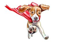 Flying Dog Super Hero Watercolor Painting Illustration