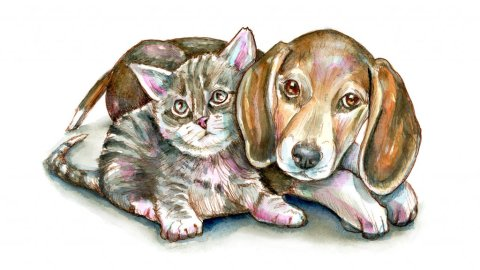 Kitten Puppy Dog Cat Sitting Together Watercolor Painting Illustration