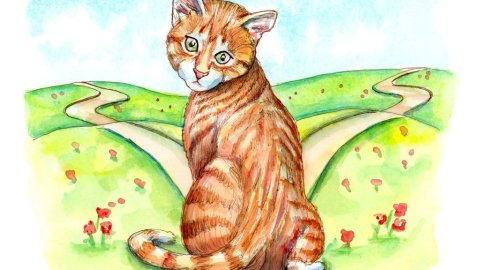 Fork In The Road Cat Kitten Ginger Tabby Watercolor Painting Illustration