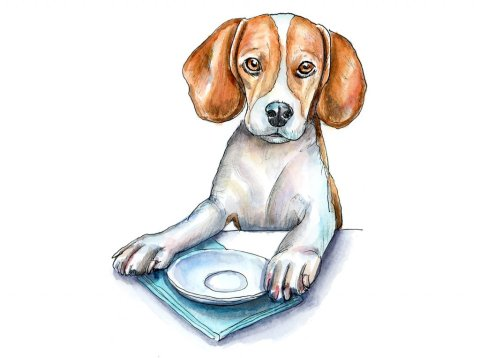Beagle At Table Waiting For Food Watercolor Painting Illustration