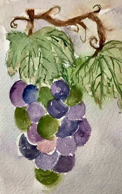 #doodlewashseptember2020 day 21 Grapes IMG_2353