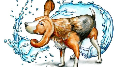 Beagle Shaking Off Water Wet Watercolor Illustration Painting