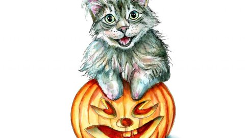 Cat Pouncing On Halloween Pumpkin Watercolor Illustration Painting