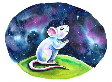 White Mouse Wishing On A Star Galaxy Watercolor Illustration Painting