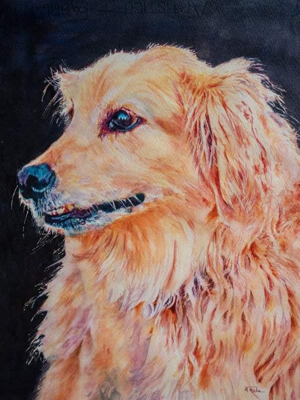 Neighbor's Pride Pet Portrait watercolor by Megha Mehra