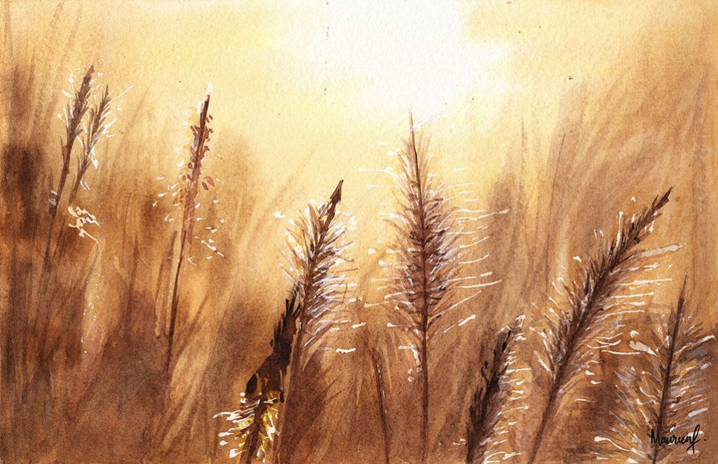 Wheat Field Sunset Watercolor Painting by Maureen Fletcher
